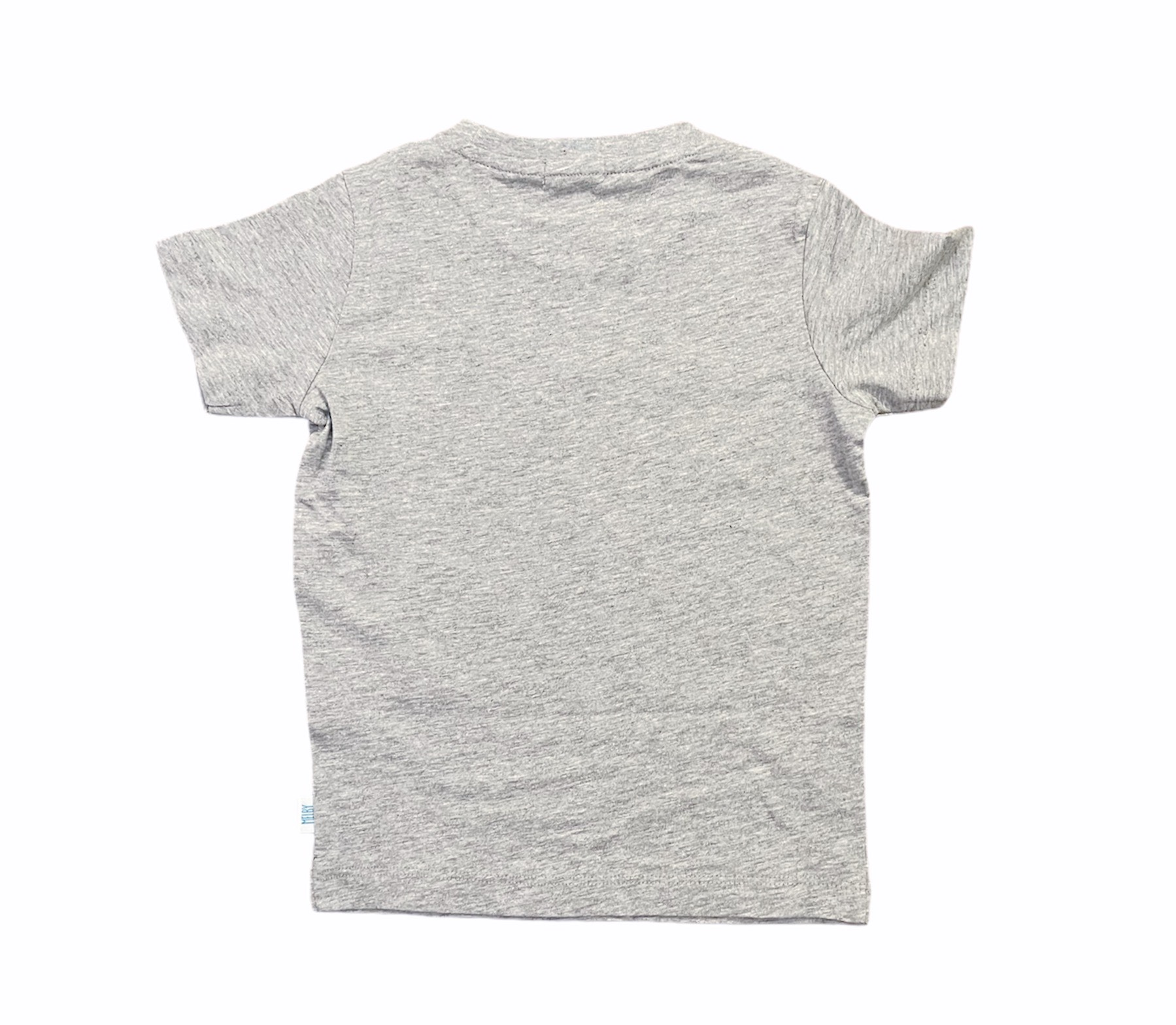 T-SHIRT MELBY BRAVE PLAYERS GRIGIO 2